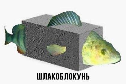 024_shlakoblokun