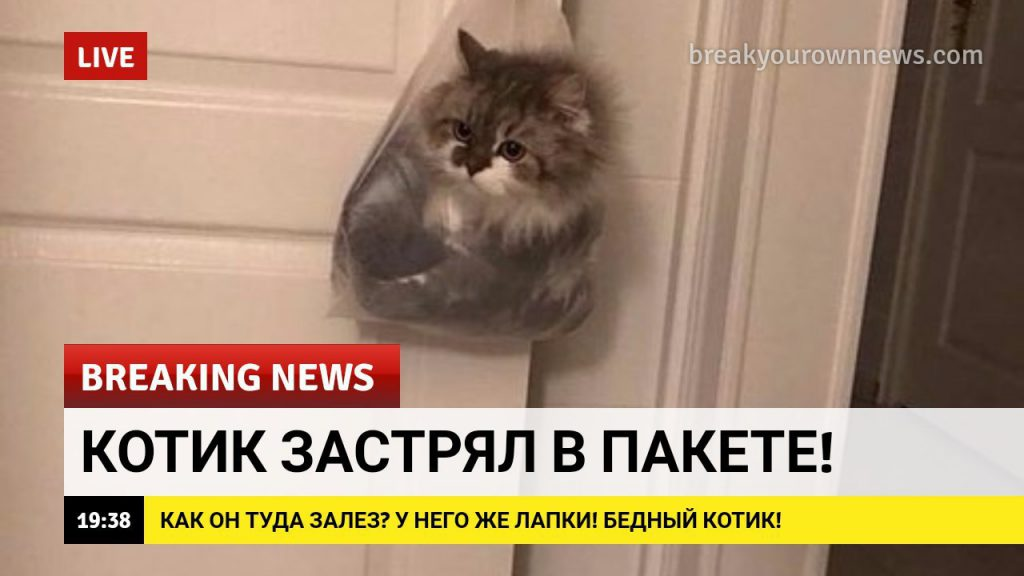 Новости дом2 на сегодня и видео